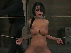 BDSM, Big Boobs, Blowjob, Hardcore, Pornstar